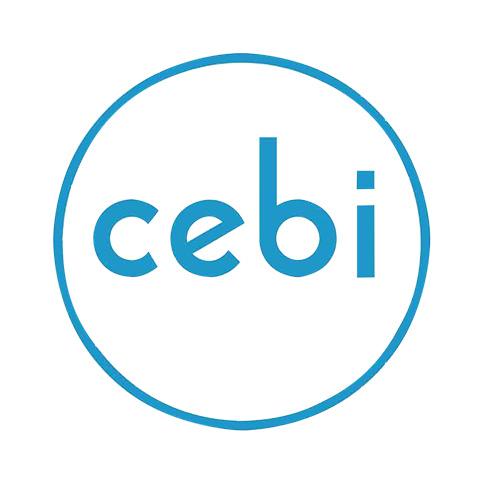 Cebi International
